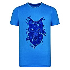 Dare 2B - Blue 'Ensemble' kids print t-shirt