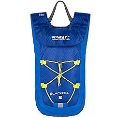 Regatta - Blue blackfell 2 litre back pack