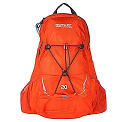 Regatta - Orange 'Back fell' 20 litre back pack