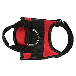 Regatta - Red 'Reflective' dog harness
