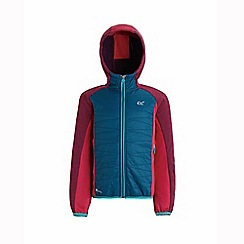 Regatta - Mixed 'Excelsis' kids hooded fleece
