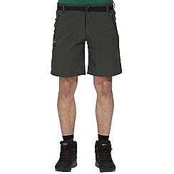 Regatta - Grey xert stretch shorts
