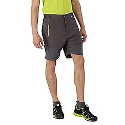 Regatta - Grey 'Sungari' shorts