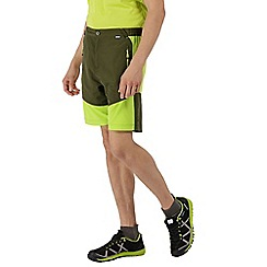 Regatta - Green 'Sungari' shorts