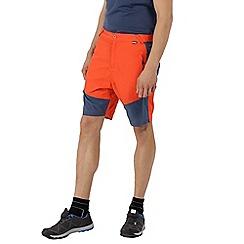 Regatta - Orange 'Sungari' shorts
