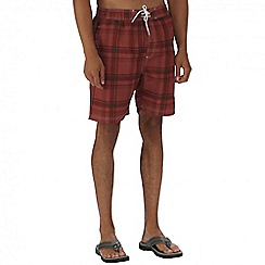 Regatta - Brown hadden board shorts