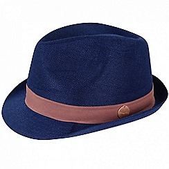 Regatta - Blue 'Taalia' trilby hat