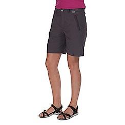 Regatta - Grey chaska lightweight shorts