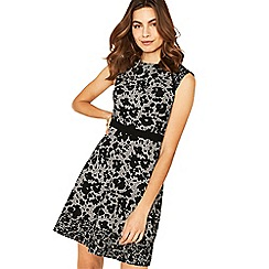 Oasis - Black and grey mono flower print skater dress