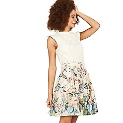 Oasis - Multi coloured 'Fitzwilliam' lace top skater dress