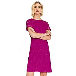 Oasis - Bright pink 'Isabelle' lace dress