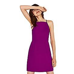 Oasis - Dark purple lace back crepe shift dress
