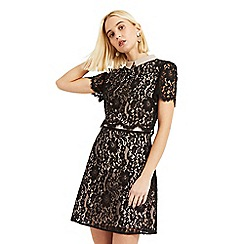 Oasis - Black Lace Collared Shift Dress