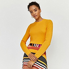 Warehouse - Fan stitch jumper