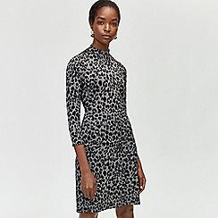 Warehouse - Animal jacquard dress
