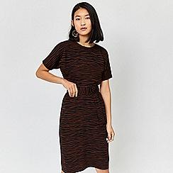 Warehouse - Zebra stripe dress