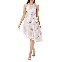 Coast - Mila print jacquard dress