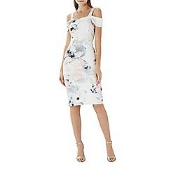 Coast - Arguta floral shift dress