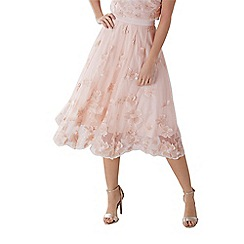 Coast - Blush pink 'Neive' floral lace skirt
