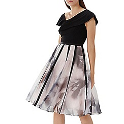 Coast - Multicoloured 'Maude' printed skirt organza dress
