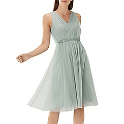 Coast - Sage green 'Lucinda' embellished tulle dress