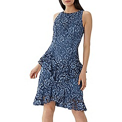 Coast - Blue lace 'Fern' ruffle dress