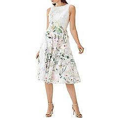Coast - Flroal printed 'Bailey' jacquard midi dress