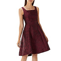 Coast - Purple merlot 'Ava May' jacquard high low dress