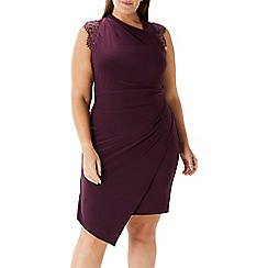 Coast - Plum 'Evan' lace jersey dress - Curve