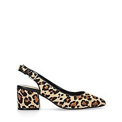 ALDO - Leopard 'Gauclya' print leather kitten heels