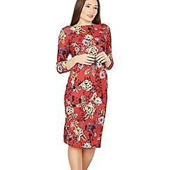 Feverfish - Red vintage rose print dress