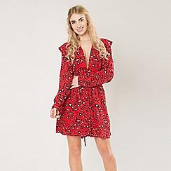 Amalie & Amber - Red leopard print mini dress