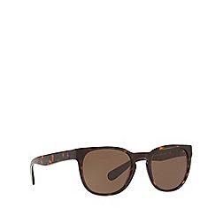 ca0aa928cc Polo Ralph Lauren - Havana 0PH4099 phantos sunglasses