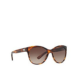 Ralph Lauren - Striped havana RL8156 cat eye sunglasses