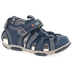 Geox - Baby boys' grey leather 'Agasim' fisherman sandals