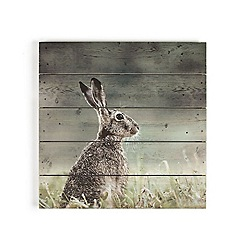 Graham & Brown - Brown hare printed on wood