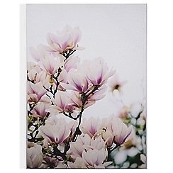 Art for the Home - Magnolia blossoms printed canvas