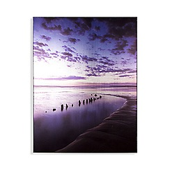 Art for the Home - Metallic serenity shores printed canvas