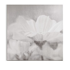 Art for the Home - Daisy daydreams printed canvas