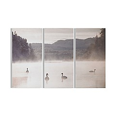 Art for the Home - Swan lakeside printed canvas
