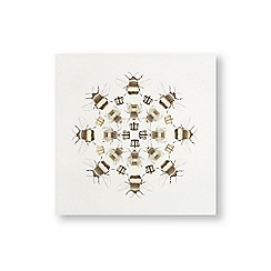 Art for the Home - Beautiful bees printed canvas