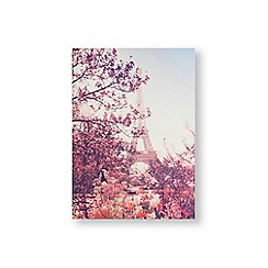 Art for the Home - Paris in bloom printed canvas