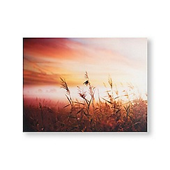 Art for the Home - Morning sunshine meadow printed canvas