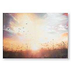 Art for the Home - Serene sunset meadow printed canvas