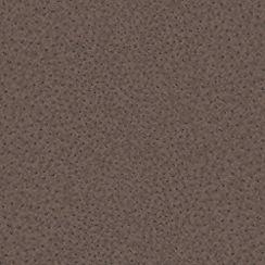 Boutique - Brown Ostrich Wallpaper