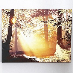 Graham & Brown - Metallic forest wall art