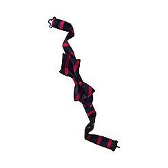 Lands' End - Blue boys' stripe woven bow tie