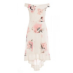 Quiz - Cream and pink mesh floral print dip hem dress