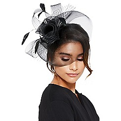 Quiz - Black rose large net fascinator