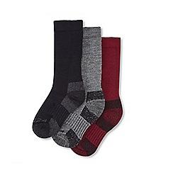 Tog 24 - Multicoloured rig ton kids 3 pack merino trek sock